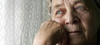 Blog-elder-abuse