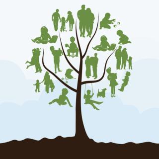 Family-tree-xs